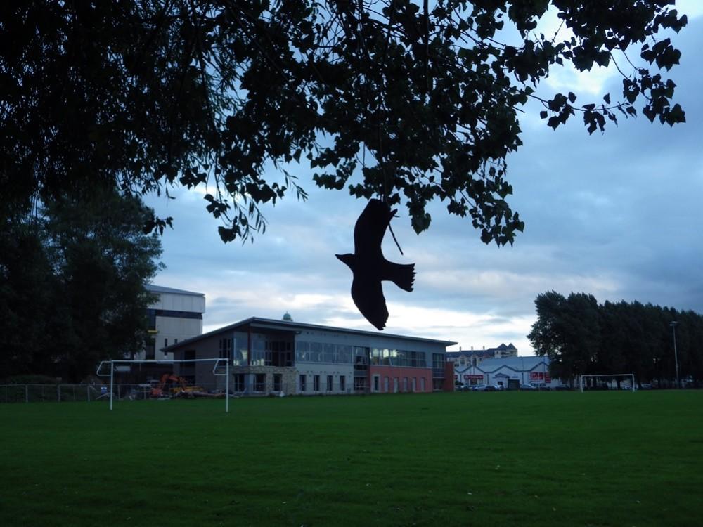 paper-crow